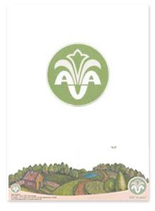 Дизайн рекламной полиграфии для компании AVAMARKET