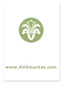Дизайн сайта для компании AVAMARKET